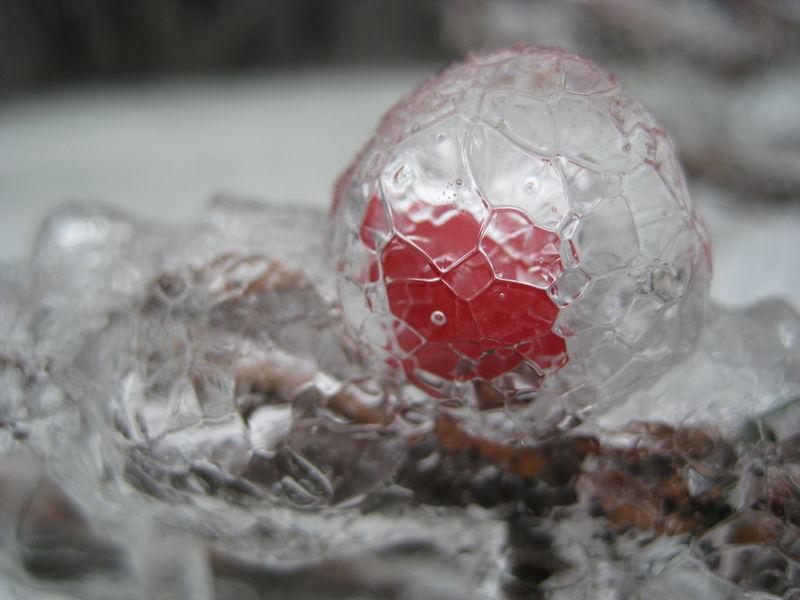 WinterIceStorm2008fw