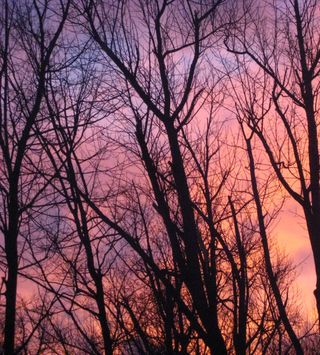 Sunset b 2